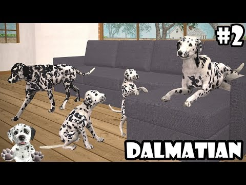 Ultimate Dog Simulator - Dalmatian : Raise A Family - Android/iOS - Gameplay  Episode 2