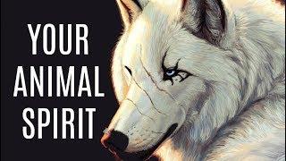 soul animal quiz