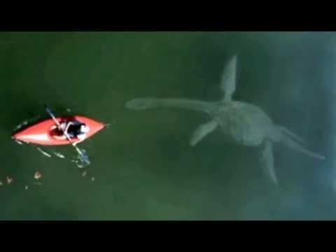 Extinct Animals Caught on Camera   Dinosaurs Pteradactyl Loch Ness Monster 2016