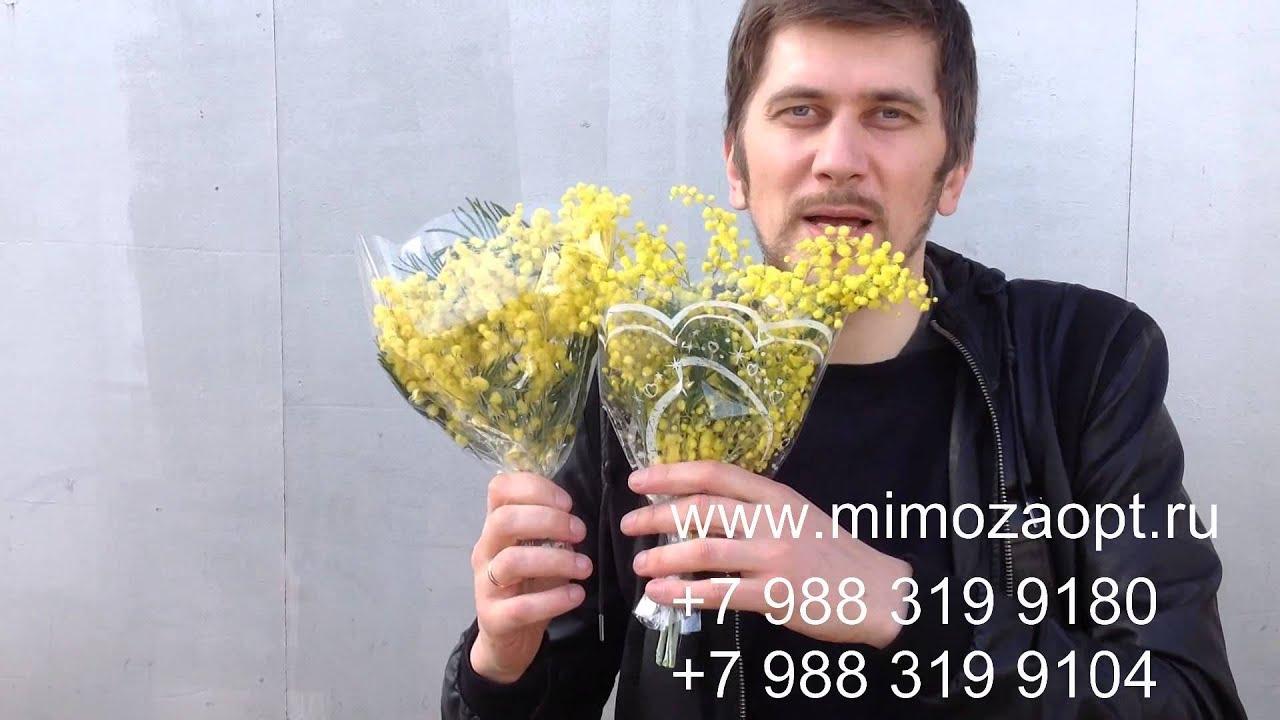 У нас можно приобрести цветы оптом по доступным ценам. В ассортименте нашей продукции можно встретить 1500 наиминований свежесрезанных растений и 1200 – горшечных. Кроме того, мы осуществляем оперативную доставку цветов не только по москве и по мо, но и по всем регионам россии – в.