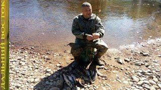 Рыбалка поплавочной удочкой на таёжной реке