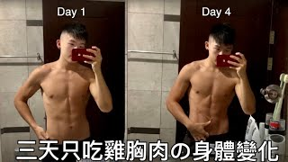 [Robert實驗室EP01]健身三天只吃雞胸肉 身體變化+數據+心得