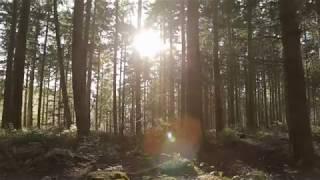 karimych - авторская музыка.Спокойная красивая музыка.Красивая природа