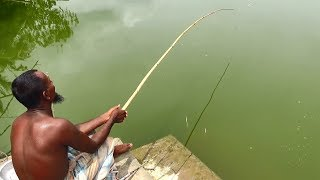 Best Fishing Video With Professional Fish Hunter By Daily Village Life (Part-98)