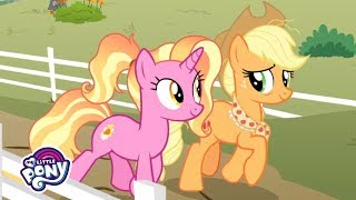 39-the-magic-of-friendship-grows-39-sing-along-mlp-friendship-is-magic-musicmonday