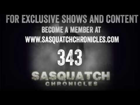 SC EP:343 Sasquatch Encounters