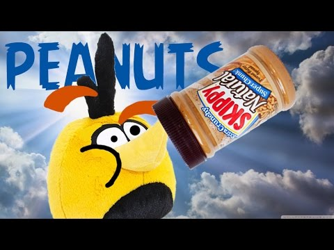 Bubble's Peanut Allergy