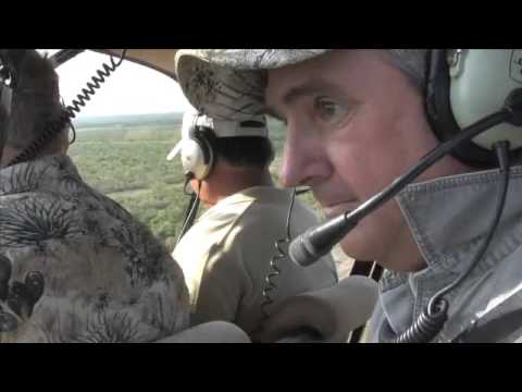 Texas Deer Management Program