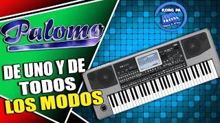 palomo de uno y de todos los modos ritmo sampleado korg pa 300 600 900 3x 4x ritmos 2016