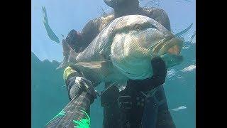 pesca variada en poca profundidad