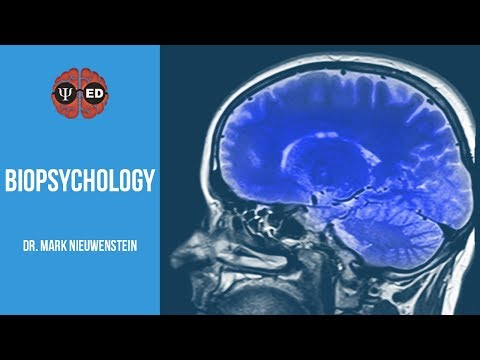 What is Biopsychology?