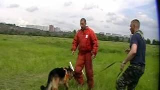 Д. Фатин Давление на собаку часть 1 Video