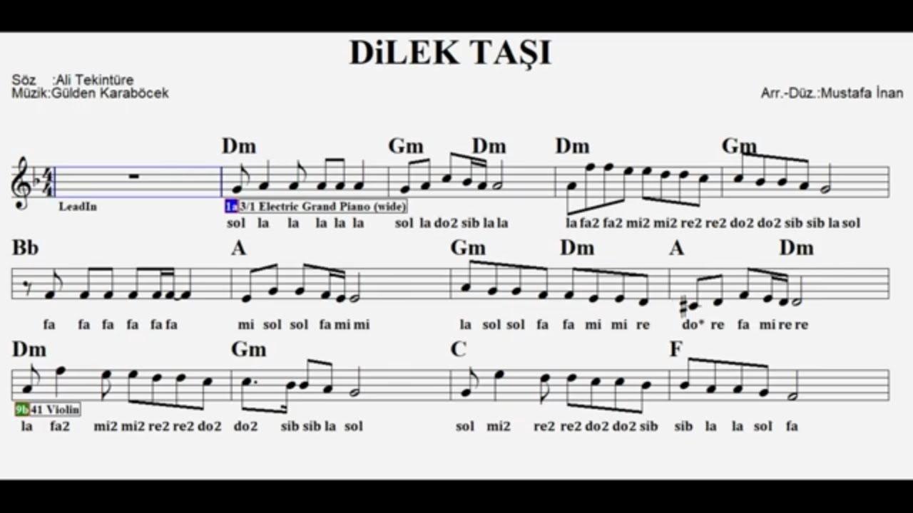Dilek Taşı - Keman & Vokal By ÇAKIRS