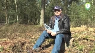 Crashplaats Mosquito op de  Wezeper Heide