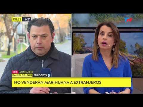 Hoy arranca en Uruguay la venta de marihuana con fines recreativos en farmacias