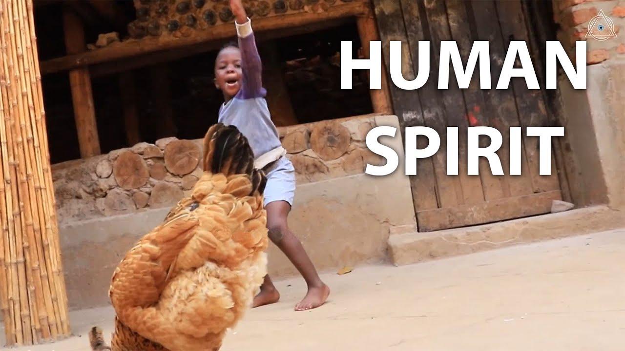 Jerusalema - Master KG - The human spirit will always win