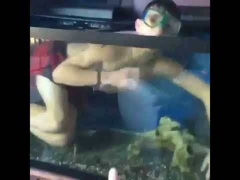 George get out of my fish tank youtube for Fish tank youtube