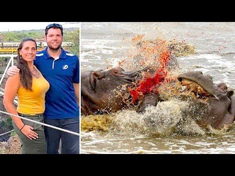 When Safaris Go Wrong