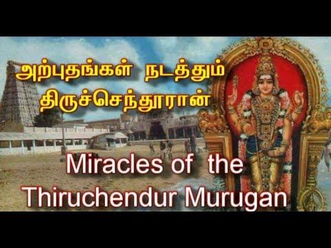 அற்புதங்கள் நடத்தும் திருச்செந்தூரான் |  Miracles of  the Thiruchendur Murugan