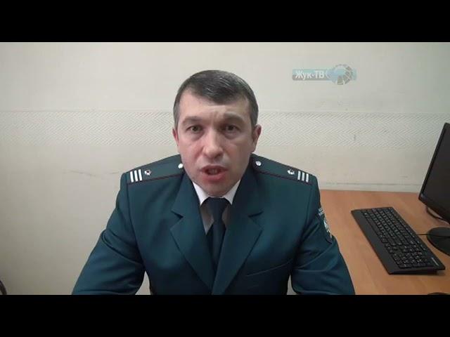 Начальник камеральных проверок ФНС рассказал об имущественных налоговых льготах