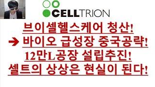 [주식투자]셀트리온(브이셀헬스케어 청산! →바이오 급성…