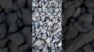 Уголь орех марки ДО