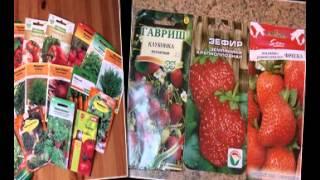 где купить семена овощей почтой(http://goo.gl/6XT3nS Самый большой выбор семян! Заходите, в крупнейший интернет-магазин!, 2015-02-08T20:38:23.000Z)