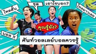 เชียร์มันส์ขึ้น!!ทำความเข้าใจศัพท์วอลเลย์บอล ก่อนเชียร์วอลเลย์บอลทีมชาติไทย