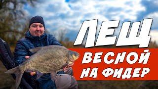 ТРОФЕЙНЫЙ ЛЕЩ На Фидер ВЕСНОЙ Фидерная Рыбалка НА РЕКЕ
