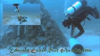 Lionfish Tournament Video Contest Entry