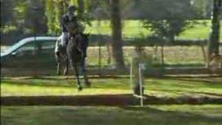 EQUITATION cheval  cross**