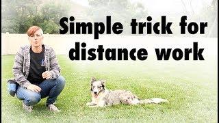 Kikopup trick for DISTANCE WORK - Dog Training