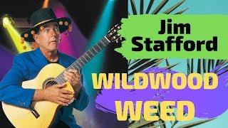 Jim Stafford LIVE  Wildwood Weed  & Saving Chihuahuas Lives