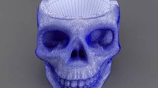 3D Model of skull-bronz-smoke-44 Review