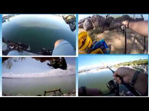 Come Pescare I Carassi Sul Lago Trasimeno