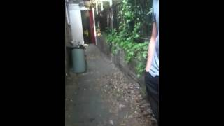 Two girls meeting zayn malik and louis tomlinson at back of studio (Not my video)