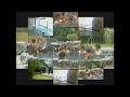 【懐い】 CMコレクション 2005年 テレビ和歌山 Ver 2