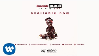 Kodak Black - Everything 1K (Official Audio)