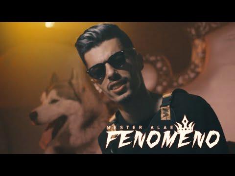 MESTER ALAE – FENOMENO