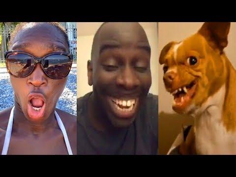😂 A Few Minutes Take Away Your Smile- 😂 😂 Funny Tik Tok Videos #53 -new Fun Us-uk 😂