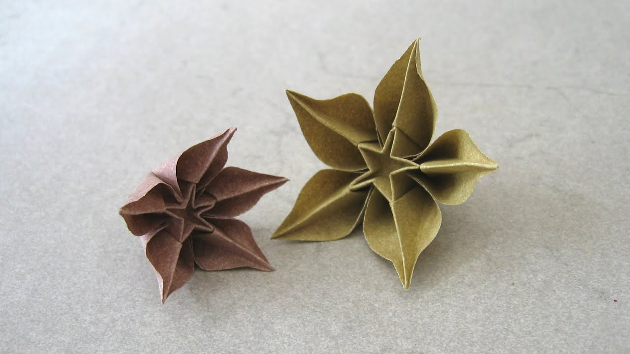 Carambola Flower Origami Diagram Wiring For Boat Ignition Switch Instructions Carmen Sprung Youtube