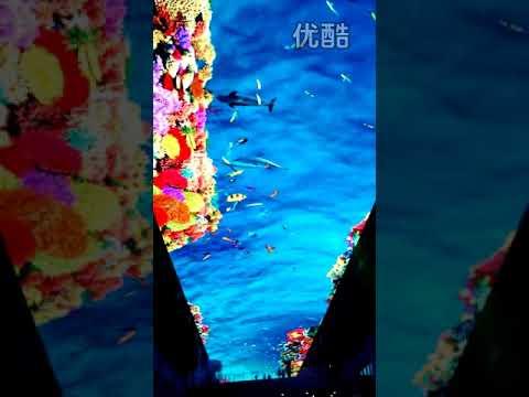 LED sky curtain/display/billboard/shopping mall