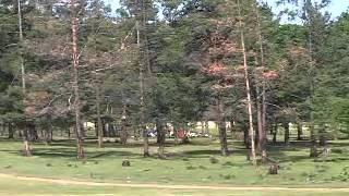 Природа Байкала. Ольхон. Путешествия с ЦГТ. Байкальская Школа(www.cgt.su., 2014-05-06T12:38:08.000Z)