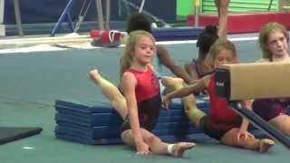 whitney usa gymnastics tops training 2014