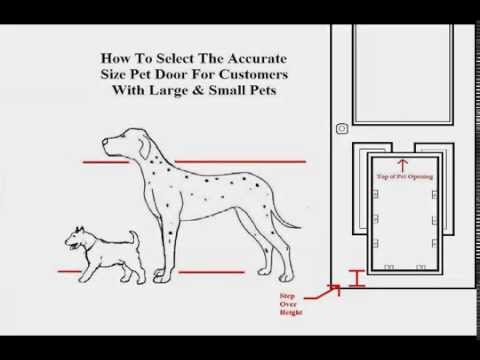 How To Measure Your Pets For The Proper Pet Door Size Youtube