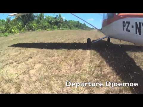 Suriname Bush flying