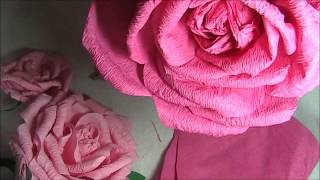 Crepe Paper Rose Sped Up Thumbnail