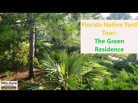 Florida Native Landscape Tour: Draught Tolerant, Low Maintenance Plants in a Coastal Yard!