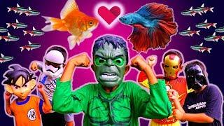 Drama Superhero Lucu Borong Ikan Hias Di Pasar Ikan - Superhero Beraksi Hulk Ironman Star Wars