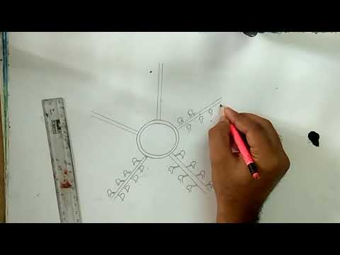 How To Draw Water Vascular System Of Star Fish